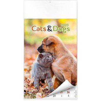 Calendario Capelli 2020.Calendario 2020 Cani E Gatti